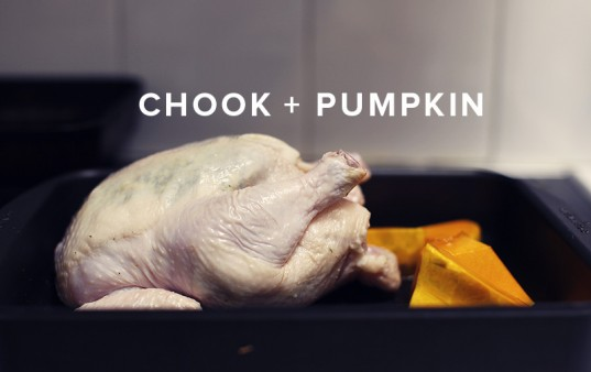 chook + pumpkin