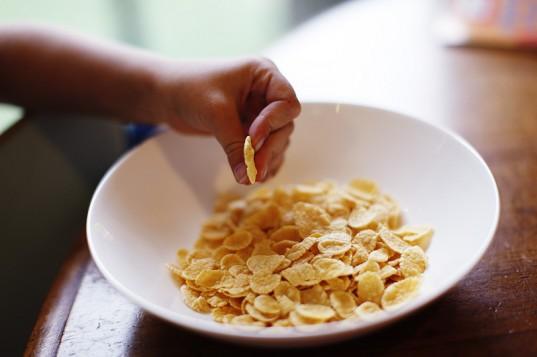 Cornflakes pre bashing